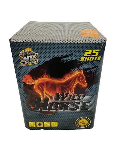 Kompaktní ohňostroj Wild Horse 25 ran...